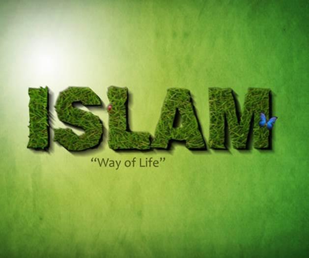 islam way life